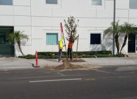 October 31 Construction Update